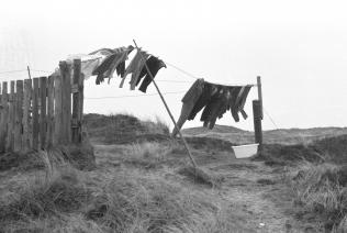 lildstrand1971_29