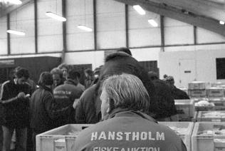 hanstholmfisk1975_19